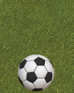 soccer field 241x300 - UEFA European Championships Funny, Epic and Dramatic Moments - The Moments which Make Football